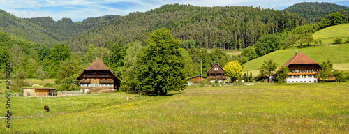 Frühling im Schwarzwald - 65812662
