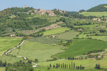 Kulturlandschaft um Monticchiello