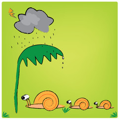 illustration snail family and the raining