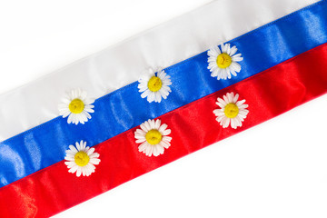 Background from camomiles on Russian flag