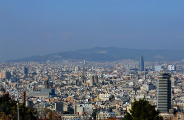 Views of Barcelona and the Barcelona Cathedral