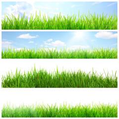 Wunderschöner Gras Banner