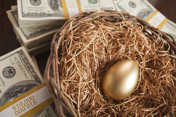 Golden Egg in Nest and Thousands of Dollars Surrounding