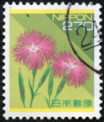 stamp printed in Japan shows Wild Pink, Pennsylvania Catchfly