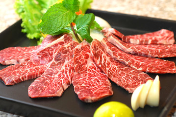 high quality premium Fresh Beef slices