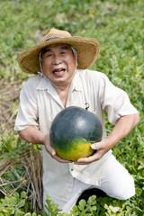スイカの収穫で喜ぶシニア
