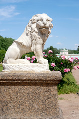 Lion statue of white marble in the park