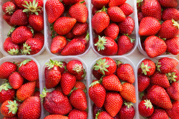 strawberry fruits in plastic package