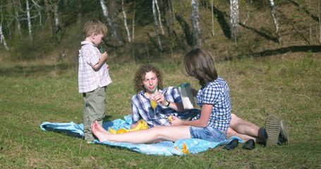 family at picnic, spring season