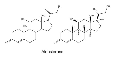 Structural chemical formulas of aldosterone