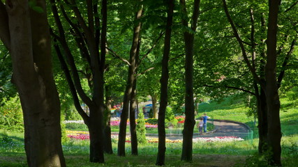 People in summer park. DSLR, Raw quality timelapse
