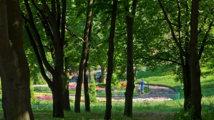 People in summer park. Raw quality timelapse. Zoom out version.
