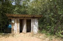 """Постер, картина, фотообои """"toilet in the forest"""""""