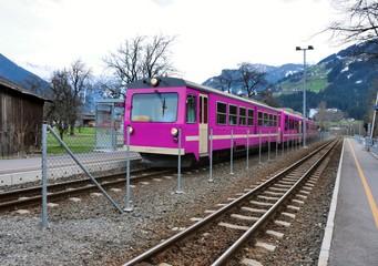 alps train