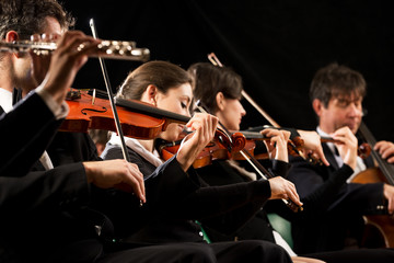 String orchestra performance © stokkete