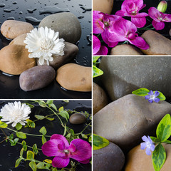 Collage of different compositions with pebbles and flowers
