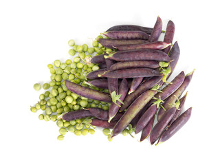 Purple podded fresh garden peas - home grown vegetable