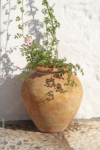 ancient spanish terracotta flowerpot