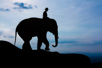 Man and elephant on the mountain
