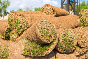 Big stacks of sod rolls for new lawn