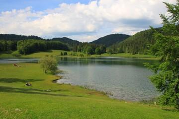 Lac Genin, Ain