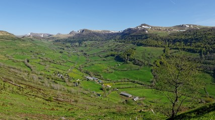 Vallée de la Maronne (15)