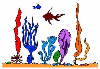 acquario su sfondo bianco