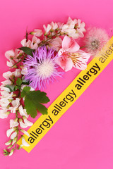 Allergenic plants on pink background