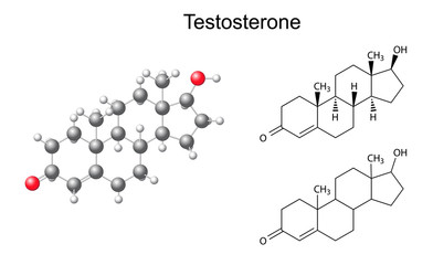 Structural chemical formulas and model of testosterone molecule