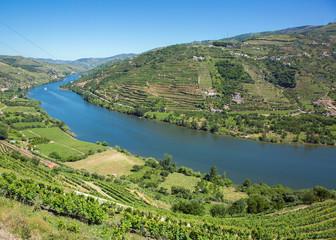 Fleuve Douro dans la région de Porto