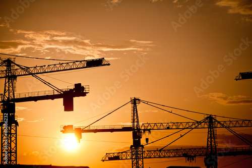 Cranes at dusk - 65886232