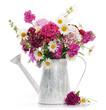 Obrazy na płótnie, fototapety, zdjęcia, fotoobrazy drukowane : beautiful summer bouquet