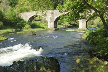 Yair bridge on the river Tweed near Selkirk in summer
