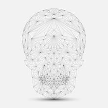 Crâne géométrique