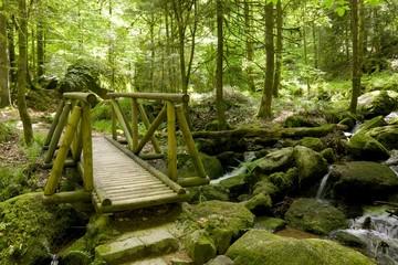 Black Forest Wooden Bridge