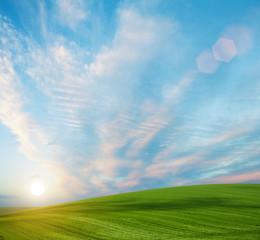 summer land sky