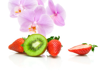strawberries, kiwi and orchid flowers on a white background