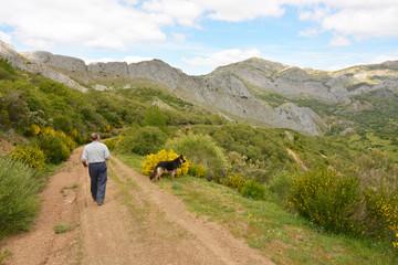 hombre y perro caminando por un camino de montaña
