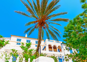 a palm in front of an old big  house in Hydra island in Greece
