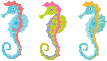 Seahorse bright colors