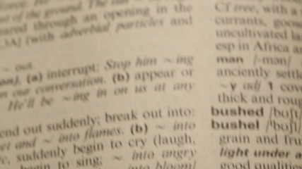 Word Business in a dictionary. Pannig and focus only on the word