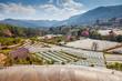 Greenhouse Plant, Royal Project , Doi Inthanon - 65918099
