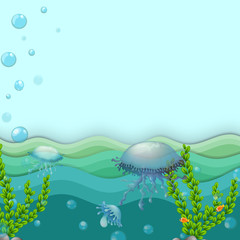 Jellyfishes under the sea