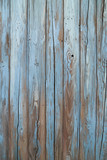 Fototapety old blue wood wall