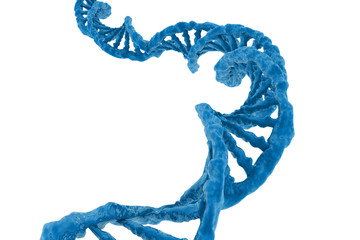 High resolution human DNA structure