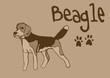 Beagle vintage