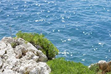 Coast in Nice, France