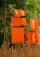 yellow robe of Buddhist monk