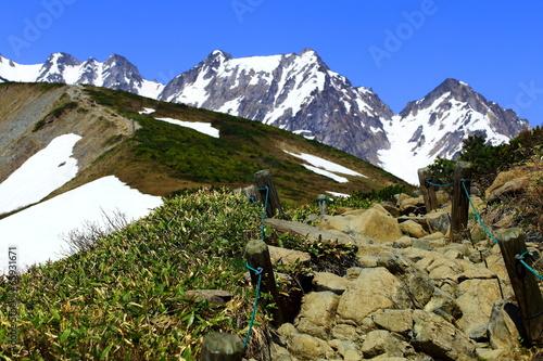 雄大な雪山へと続く登山道