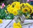 Strauß aus Löwenzahnblüten auf Gartentisch :)
